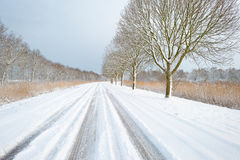 Tire tracks on a snowy road Royalty Free Stock Photography