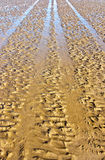 Tire tracks on wet sand Stock Photography