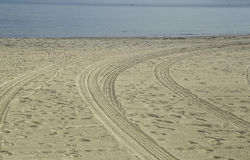 Tire truck track on the sand at Cabrillo Beach Stock Images