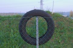 Tire on the wire mesh fence Stock Photography