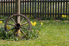 Tire2 de madeira Foto de Stock Royalty Free