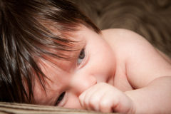 Tired Baby Boy. A newborn baby boy laying down for a nap. He has thick brown hair and blue eyes. The image orientation is horizontal Royalty Free Stock Images