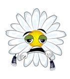 Tired chamomile flower cartoon Stock Photo