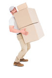 Tired delivery man carrying stack boxes Royalty Free Stock Photos