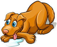 Tired dog panting. Tired brown dog panting on a white background Stock Images