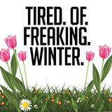 Tired of freaking winter tulips poster Stock Photo