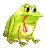 A tired green frog Royalty Free Stock Photos