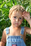 Tired little farmer. My three year son standing in our corn Stock Images
