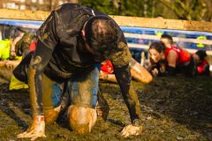 A tired man exhausted after an extreme exercise activity, running under a barbed wire in a mud racer stock image