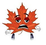 Tired mapple leaf cartoon Stock Image