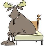 Tired moose sitting on a bed Royalty Free Stock Photos