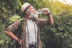 Tired old man drinking water from bottle in woodland Stock Photography