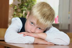 The tired pupil. The pupil lies on a school desk Stock Image