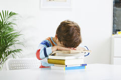 Tired schoolboy studying in home. Stock Image
