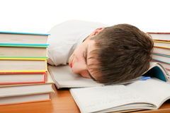 Tired Student sleep Stock Photography