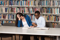 Tired Student Sleeping In Library Stock Photos