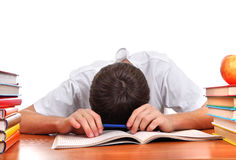 Tired Student sleeping Stock Photos