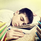 Tired Student Royalty Free Stock Photography