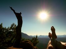 Tired  sweaty legs on peak of rock at broken pine tree. Hot windless summer day Royalty Free Stock Photography