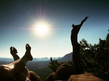 Tired  sweaty legs on peak of rock at broken pine tree. Hot windless summer day Royalty Free Stock Photos
