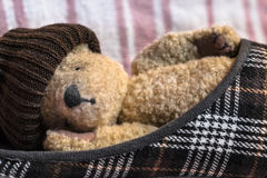 Tired Teddy Sleep in a Shoe Royalty Free Stock Photos