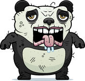 Tired Ugly Panda Stock Image