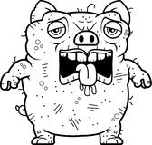 Tired Ugly Pig. A cartoon illustration of an ugly pig looking tired Stock Photos