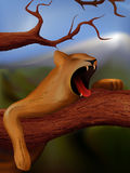Lioness yawning. Tired yawning lioness lying on the tree stock illustration