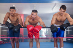 Tired young male boxers leaning on rope Royalty Free Stock Photography
