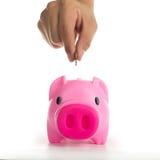 Tirelire augmentant votre élevage de finances Image libre de droits