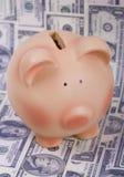 Tirelire et billets d'un dollar Photo stock