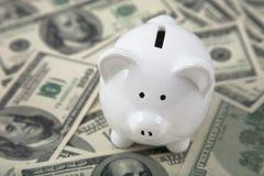 Tirelire mignonne sur des segments de mémoire d'argent comptant Photo stock