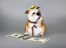 Tirelire pour l'argent, représentée dans l'image d'un oligarque photo stock