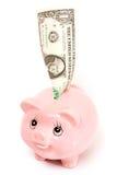 Tirelire rose de porc d'isolement Photo libre de droits