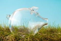 Tirelire vide dans l'herbe Photo stock