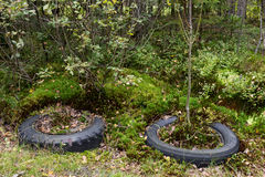 Tires dumped in the woods stock images