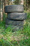 Tires left in the woods Royalty Free Stock Photo