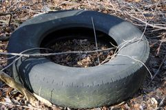 Tires. Old tires left in a wooded area Royalty Free Stock Photography
