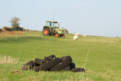 Tires and tractor. Royalty Free Stock Photography