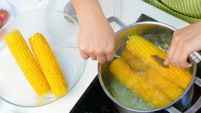 Tirez le maïs de l'eau bouillante banque de vidéos