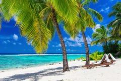 Tiri i letti in secco sotto gli alberi con una vista di oceano, il cuoco Isl del cocco fotografie stock