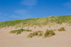 Tiri la costa in secco con le dune un giorno soleggiato con cielo blu Immagine Stock Libera da Diritti