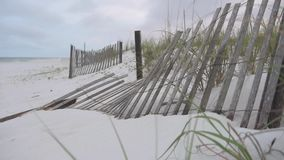 Tiri la sabbia in secco con le foglie verdi e recinti Pensacola, Florida video d archivio