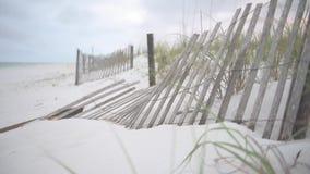 Tiri la sabbia in secco con le foglie verdi e recinti Pensacola, Florida stock footage