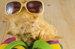 Tiri la vacanza in secco Occhiali da sole, Flip-flop, conchiglia su fondo di legno Fotografia Stock