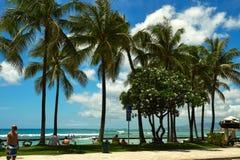 Tiri sulla costa dell'oceano Pacifico, Hawai Fotografia Stock Libera da Diritti