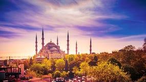 Tiro aéreo da mesquita azul cercado por árvores na cidade velha de Istambul - Sultanahmet, Istambul, Turquia fotos de stock royalty free