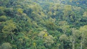 Tiro aéreo da paisagem em Butão do leste video estoque