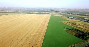 Tiro aéreo de campos con los diversos tipos de agricultura farming Tiro aéreo de las tierras de labrantío Tiro aéreo de agrícola metrajes