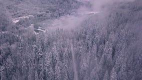 Tiro aéreo de establecimiento y que revela de un camino nevado y de los árboles que abren a las montañas almacen de video